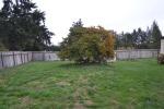 yard back 4